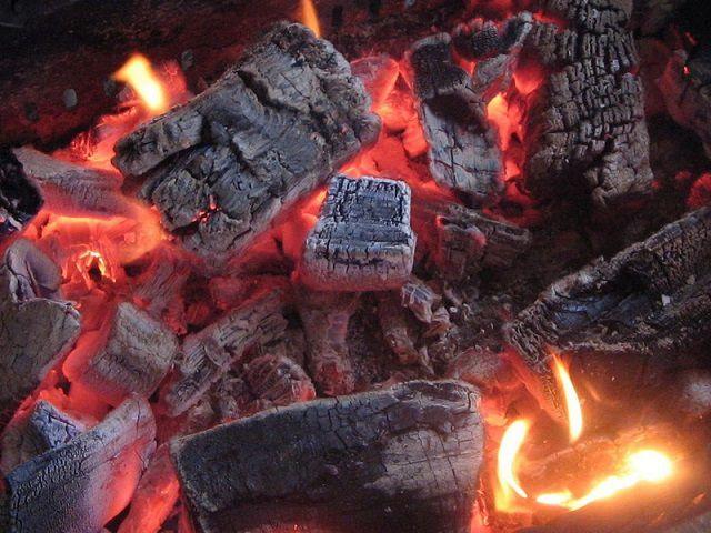 Какие дрова лучше для отопления