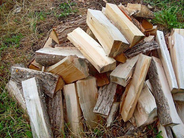 Липовые дрова обладают хорошим оздоравливающим эффектом