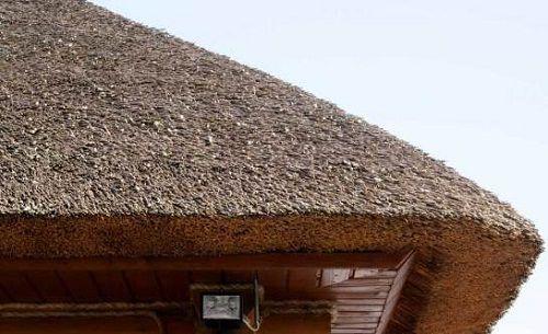 Соломенная крыша – удобно, необычно и дешево