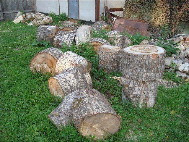 Даже дешевизна тополя или ивы не оправдает крайне низкой теплоотдачи таких дров
