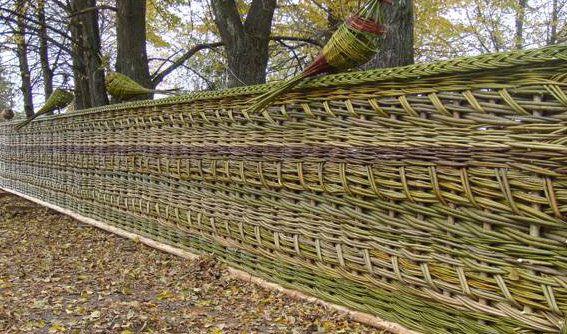 Декоративный плетёный забор для дачи