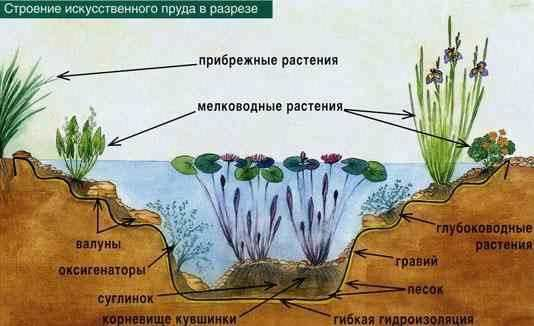 Как сделать декоративный пруд в саду