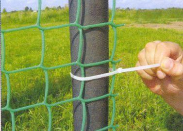 Как сделать живую изгородь своими руками