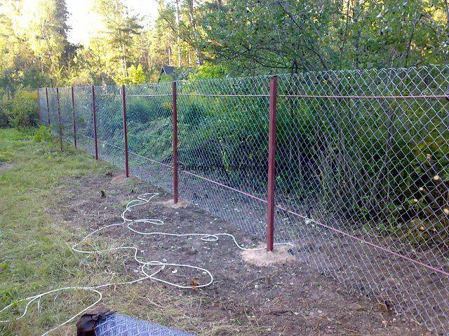 Весьма популярный у садоводов забор из сетки-рабицы