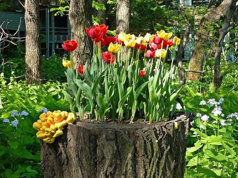 Вазон для сада своими руками фото