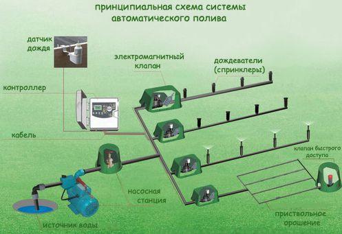 Оросительные системы для дачи