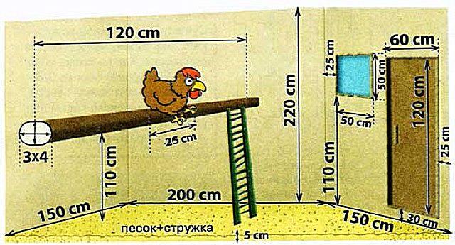 Наглядная схема базовых размеров курятника