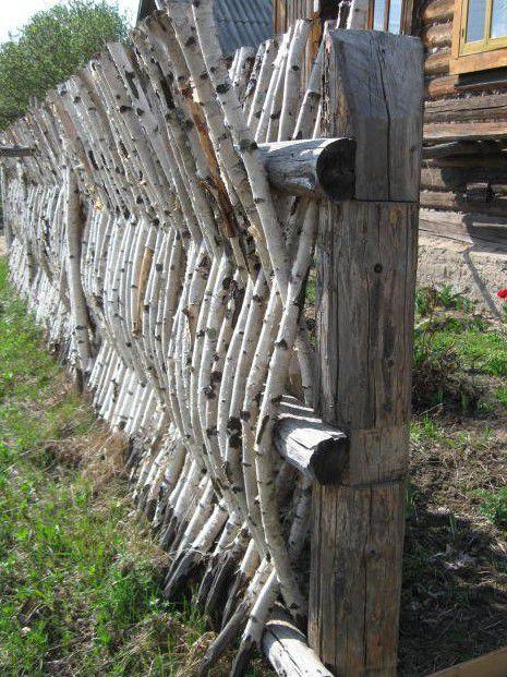 Забор из березовых веток