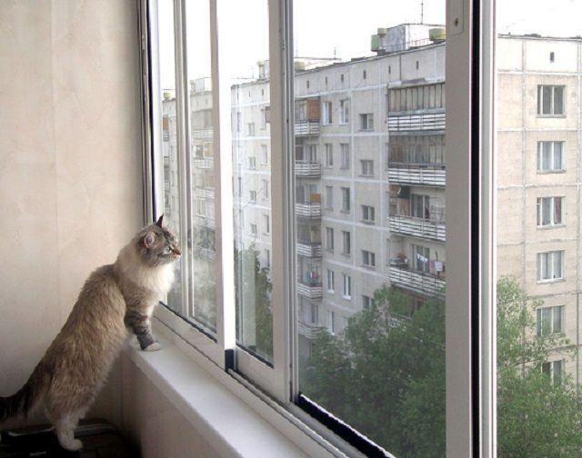 Алюминиевые рамы на балконе