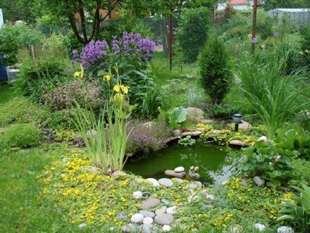 Отлично украшают пейзаж небольшие искусственные пруды