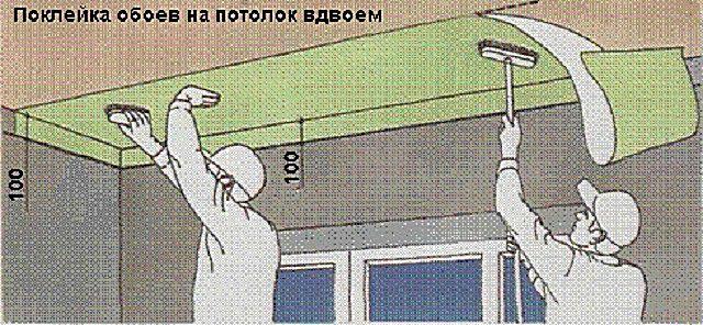 Удобнее будет клеить обои на потолок вдвоем