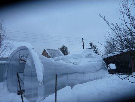 Теплица из некачественного поликарбоната прогнулась из-за излишней снеговой нагрузки на каркас