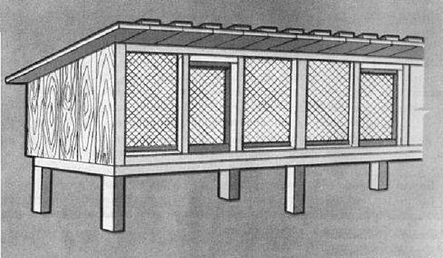 Клетка для взрослых особей имеет полностью сетчатые фасадные стенки