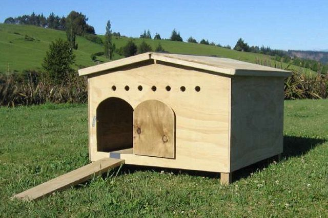 Небольшой домик для уток на деревянных ножках