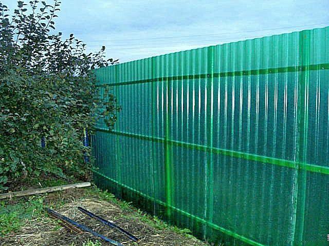 Забор из волнового шифера «Elyplast»
