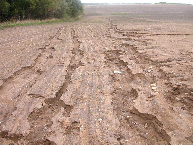 Водная эрозия плодородной почвы при отсутствии дренажа - серьезная проблема в сельском хозяйстве