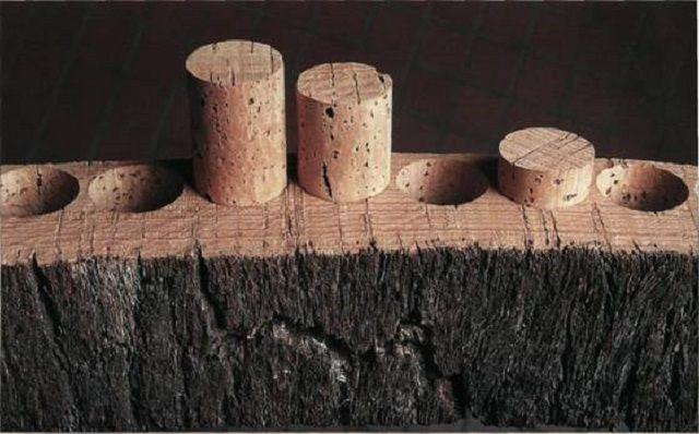 Простительная тавтология – ведь из пробки действительно изготавливают пробки для качественных вин