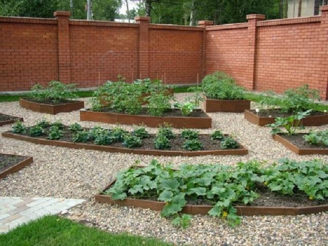 Правильно оборудованные проходы между грядками на огороде решают сразу несколько важных проблем