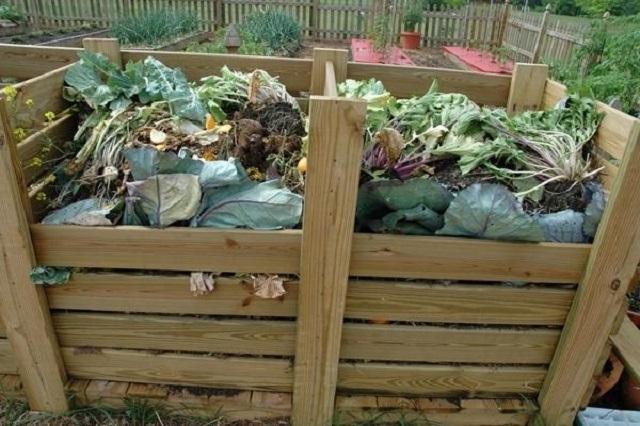 В компостную яму не следует валить все отходы подряд – для этого есть определенные правила